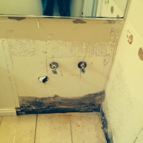 mold testing, mold repair