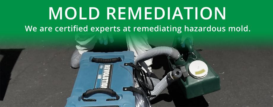 Mold remediation, Black mold, Mold testing