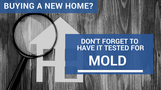 Buying a new home? Have it tested for mold